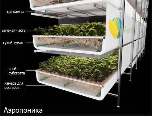 Оборудование гидропоника для выращивания зелени 98