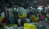 Индия – страна счастливых людей.. Психология и религия, Путешествия