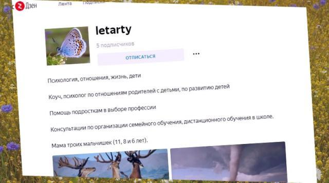 Про заработок на Яндекс.Дзен. Мой опыт блогинга.. Интернет, IT, Экономика и бизнес