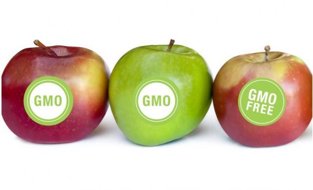 ГМО продукты? В чем опасность?. Животные, растения, с/х, Экология и здоровье