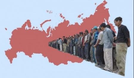 «Госуслуги» недружелюбны к иностранцам.. Закон, Общество