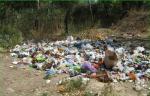 Ситуация с вторсырьем в Крыму.. Общество, Экология и здоровье